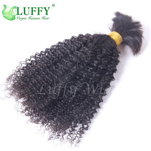9A Brazilian Virgin Human Hair Afro Braiding Hair Bulks - HB002