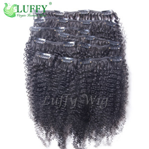 8A Brazilian Virgin Human Hair 200 Grams Afro Clip In Hair Extensions - CH001-200g